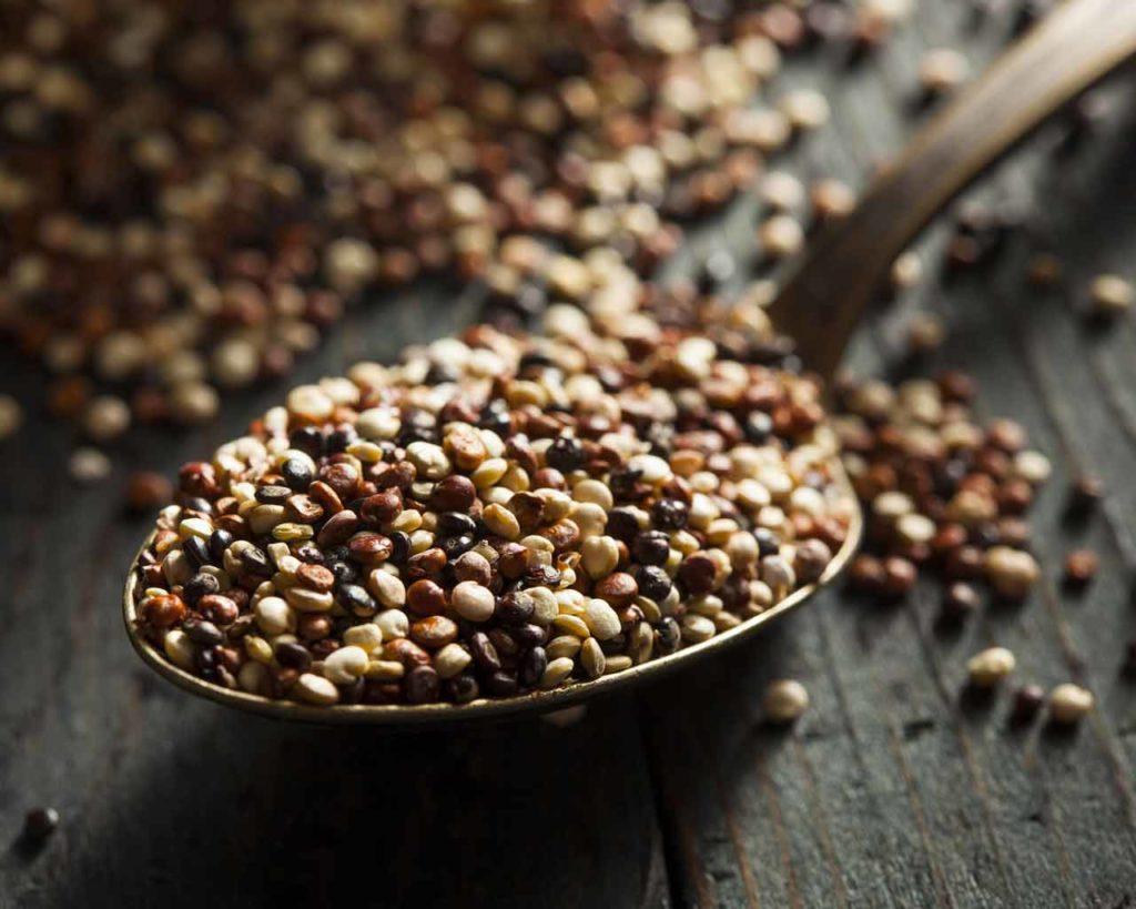 Quinoa tricolore Allpampa, produits alimentaires biologiques et équitables, en vrac ou sachet, en provenance d'Amérique latine